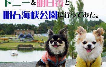 トニー&明日香と、明石海峡公園に行ってみた。